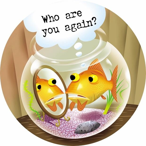 goldfish bad memory cartoon