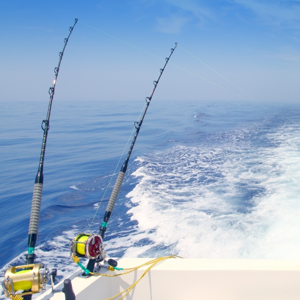 saltwater fishing rods