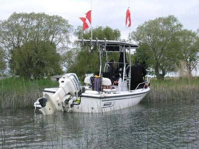 fishmaster t-top on boston whaler
