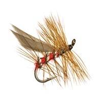 terrestrial dry fly