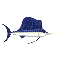 pacific sailfish icon