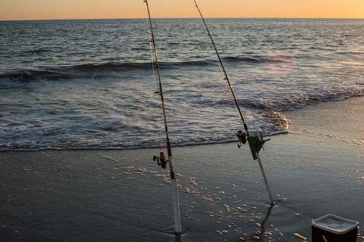 How-to Surf Fish - Saltwater Fishing Basics