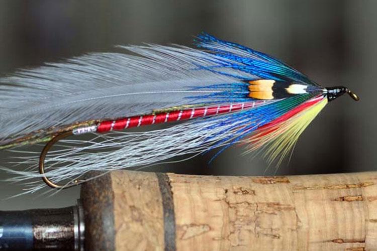 What Fly Should I Use? - Fly Fishing Basics